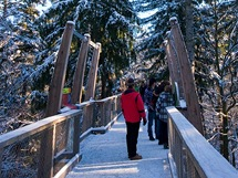 Jedno z informačních stanovišť na unikátní stezce vedoucí v korunách stromů Bavorského lesa.