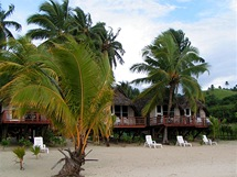 Na Cookových ostrovech rostou palmy místy přímo skrze plážové bungalovy.