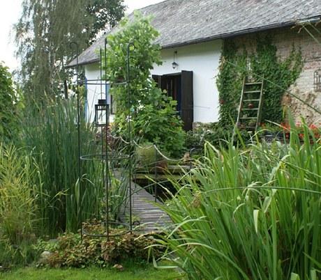 V zahradě převažuje vlhkomilná až mokřadní zeleň, uprostřed zahradě vévodí tulipánovník