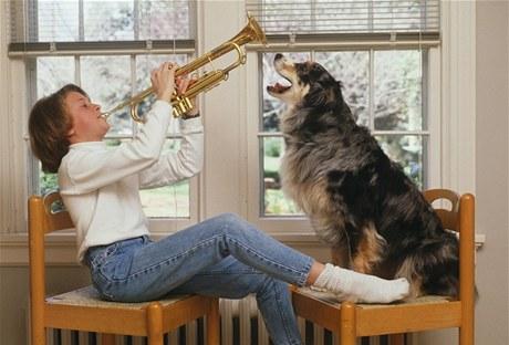 V rodinném domě by štěkání či vytí vašeho psa nikomu vadit nemělo, v domě panelovém nebo činžovním je to složitější