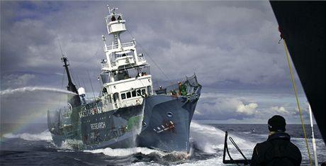 Aktivist� ze Sea Sheperd Conservation Society blokuj� japonskou velryb��skou lo� (9. �nora 2011)