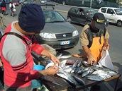 Prodej čerstvých ryb u přístavu