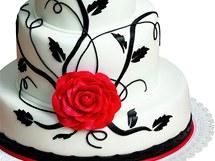 Vi��ov� dort s b�lou glazurou.