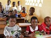 Společně s knížkami se nyní po střední Africe distribuuje také 15 000 skládaček. Na líci jsou fotografie volně žijících goril nížinných a na rubu naučné texty.