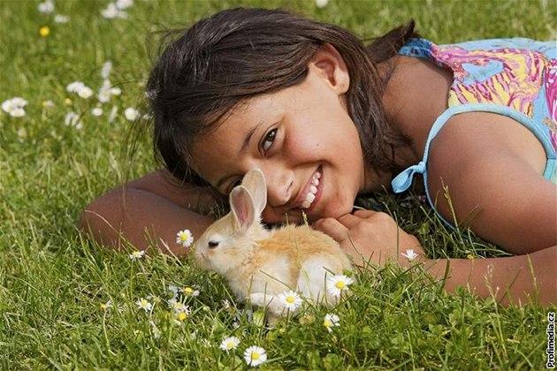 Králíček je vhodnou alternativou domácího zvířecího  miláčka pro děti.