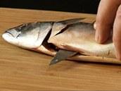 Filetování sardinky.