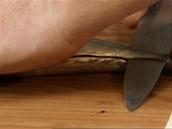 Při filetování sardinky jedete nožem podél páteře až k ocasu.