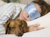 Pes do postele nepat��, ale kdo by nepustil sv�ho mazl��ka do tepl�ch pe�in. Riskujete ale blechy, kl횝ata i ekz�my.