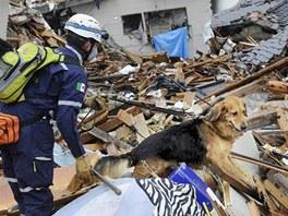 Záchranář hledá pohřešované v troskách domů v japonském městě Mijadži.  (16. března 2011)