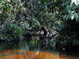 Pirogu, neboli loď vydlabanou z kmene, odstrkují úzkým korytem řeky dva muži s pádly .