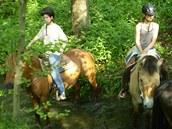 V létě pořádají na zámeckém statku na Vysočině koňské tábory pro děti.