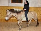 Jedna z Břéťových nápadnic na jeho koni Jantarovi.