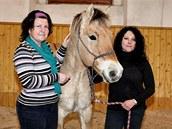 Dvě z Břéťových nápadnic s jeho koněm Jantarem.