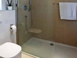 Majitelka použila prostorný sprchový kout a zástěnu z čirého skla. Ostré hrany sprchového prostoru zjemňuje sanita oblých tvarů.