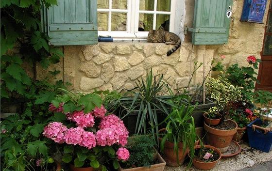 Provence, milé zátiší