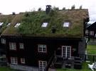 Již pouhých pět procent zatravněných střech ve městě je pro životní prostředí nezanedbatelným přínosem.