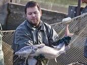 Rybáři vodňského vyýzkumného centra vylovili jeseterovité ryby včetně vyz velkých, největších sladkovodních ryb