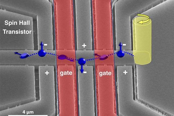 Snímek spinového tranzistoru, který sestrojil tým Tomáše Jungwirtha, viděný elektronovým mikroskopem