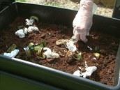 Kuchy�sk� odpad v�dy jednodu�e p�isypete, rozhrnete a kompost�r p�ikryjete v�kem.