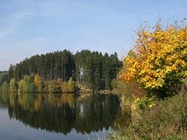 Ostrov nad Oslavou je krásná přehrada ukrývající nejeden šupinatý poklad.