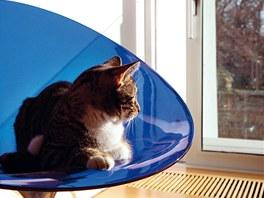 Kočky si užívají pohodlí v křesle od italského Kartellu.