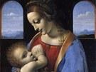 Leonardo da Vinci: Madona s dítětem