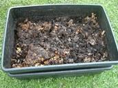 ��ste�n� zpracovan� kompost