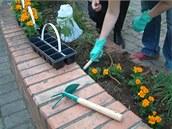 Guerilla gardening v pra�sk�m Karl�n�