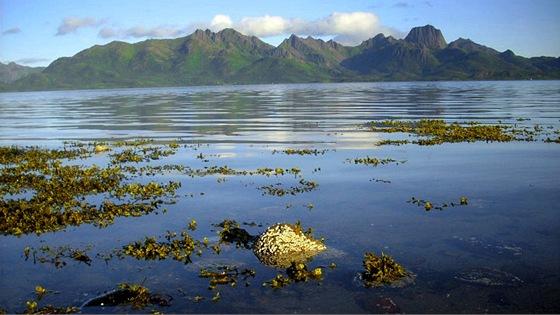 Prot�j�� ostrov Langoya v dopoledn�m slunci