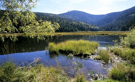 Malé javorské jezero (Kleiner Arbersee)