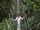 Turistka na visutém most� v Národním Parku Taman Negara v Malaysii.