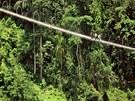 Most v indickém Alongu zkracuje cestu d�unglí