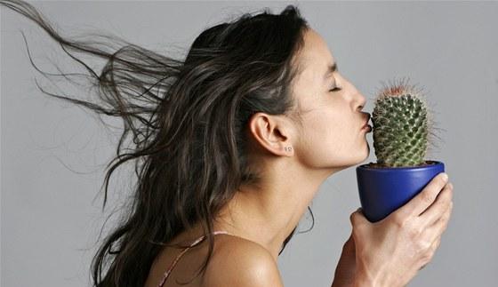 Pokud chcete květiny nenáročné na zálivku, musíte si zamilovat kaktusy či
