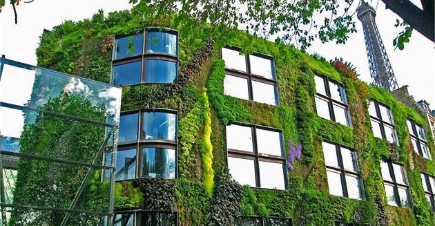 Vertikální zahrady vzbuzují p�íjemné pocity dokonce i u skupin, které mají...