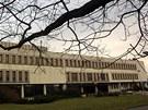 Stromy u královéhradeckého konferenčního centra Aldis.
