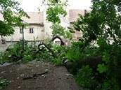 Na most v zámeckém parku v Brtnici se v neděli zřítily mohutné větve. Brtnický