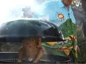 Jakmile třešňové štěpky začnou čoudit, posaďte kuře na pivní plechovce na gril.
