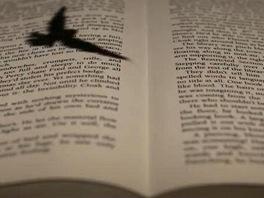 Zábery z videa J. K. Rowlingové věnované projektu Pottermore.com