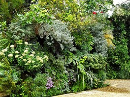 Botanick� kompozice Patricka Blanca zahrnuj� velk� mno�stv� nekonven�n�ch