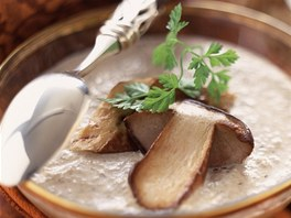 Oblíbené jsou krémové houbové polévky i omáčky.