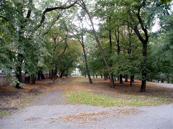 Za dětským hřištěm, které je vlevo za branou do Královské obory, můžeme vidět