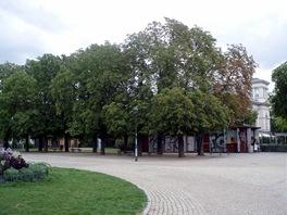 Přesně v místech, kde vozovna stávala, je dnes dvojité kaštanové stromořadí.