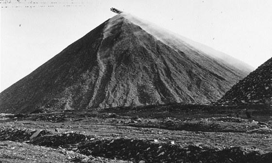 Halda Ema na archivním snímku z roku 1962.