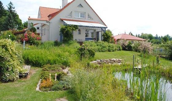 Na terase u domu najdete sibiřské kiwi (samčí a samičí rostlina), u terasy v
