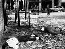 Vukovar, listopad 1991. Město ve východní Slavonii bylo první kompletně zničené město v Evropě od druhé světové války.