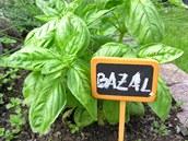 Abyste pro čerstvé snítky bylinek mohli posílat kohokoliv, označte si je