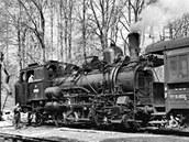 Zubačka Tanvald - Harrachov - Parní ozubnicová lokomotiva 404.003, Dolní