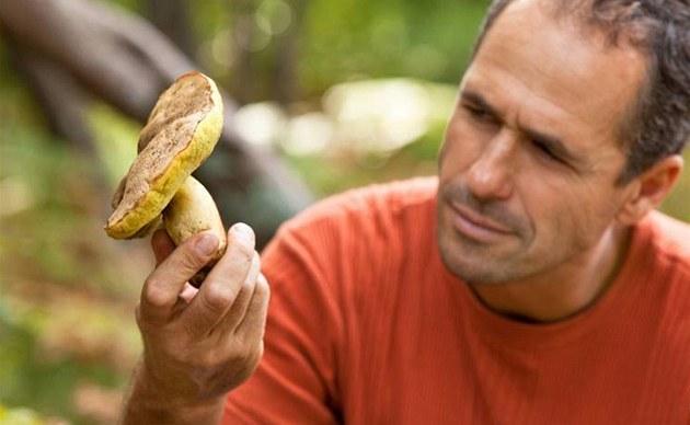 Ne v�echny mýty o houbách se zakládají na pravd�. Na pravou míru je uvede Ale�