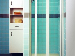 Dveře ke sprchovému koutu