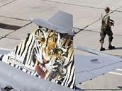 Vyzdobená stíhačka tygří letky